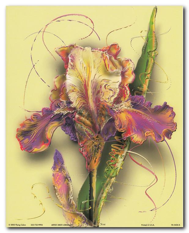 Tulip Flower Floral Fine Wall Decor Art Print Poster (16x20)