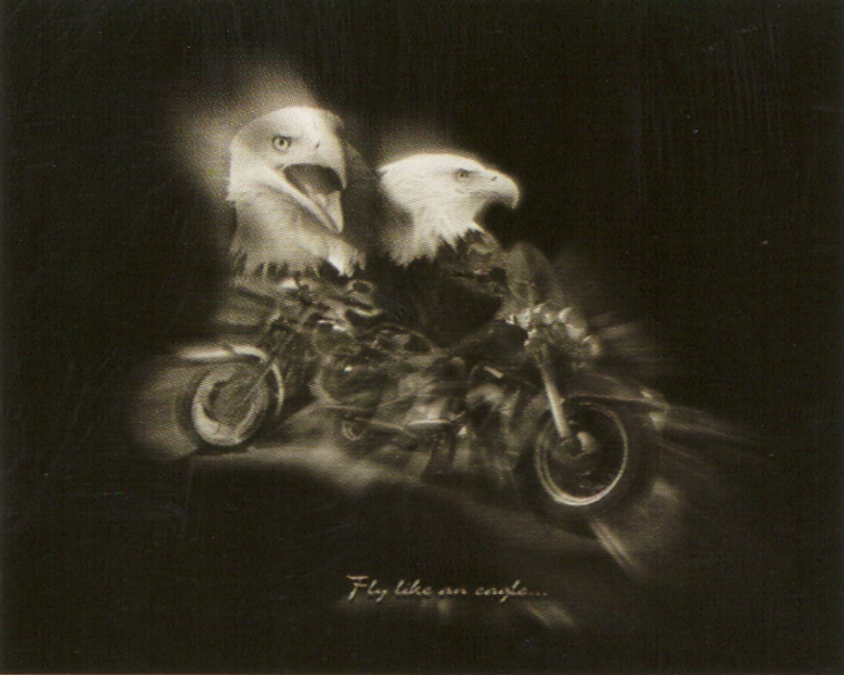 """Black and White Motorcycle """"Fly Like an Eagle"""" Wall Decor Art Print Poster (16x20)"""