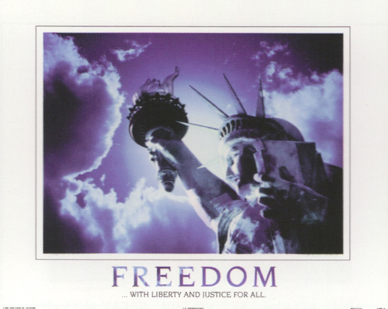 Freedom with Liberty and Justice for All Inspirational Art Print Poster (16x20)