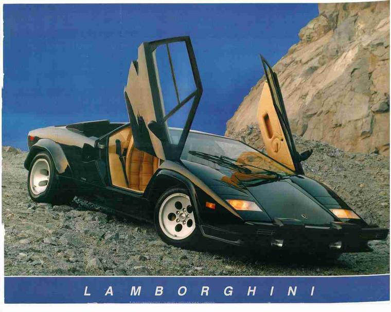 Black Lamborghini Automobile Car Open Door Wall Decor Art Print Poster (16x20)