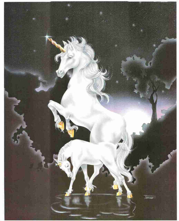 Mythical Unicorn White Horse Sue Dawe Moonwind Wall Art Print Poster (16x20)