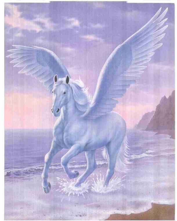Fantasy Unicorn Mythical White Pegasus Sue Dawe Wall Decor Art Print Poster (16x20)