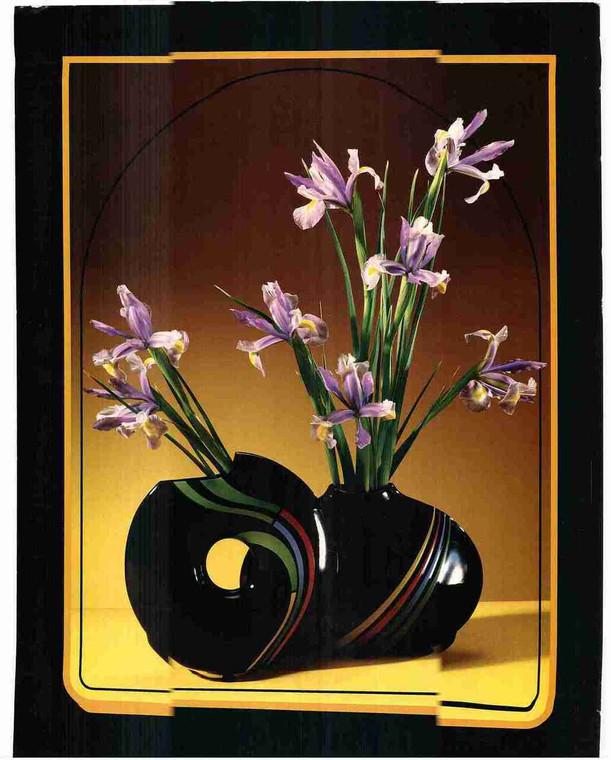 Beautiful Tulip Purple Flower in Vase Fine Art Wall Decor Print Poster (16x20)