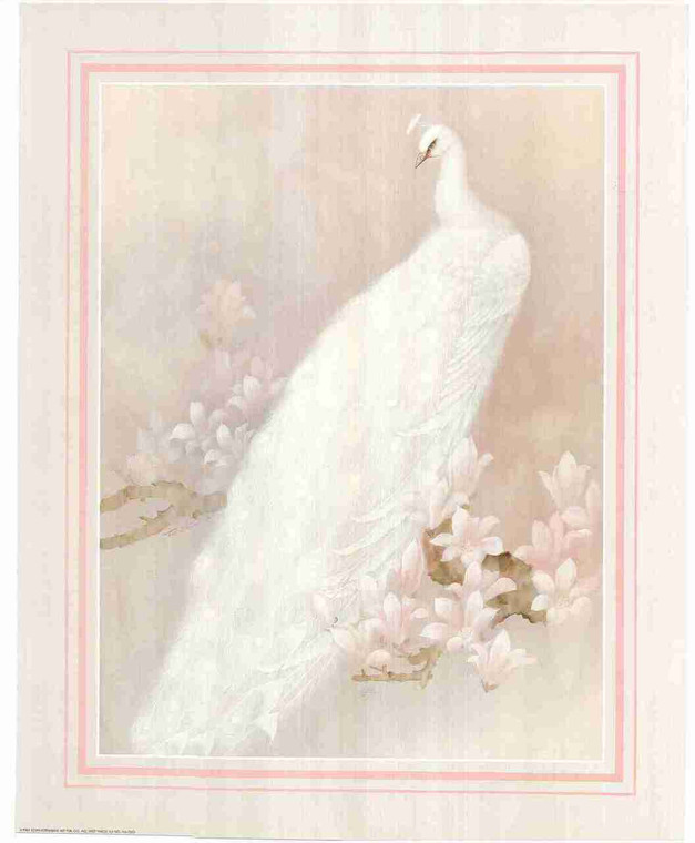 Graceful White Peacock Painting Wall Decor Pink Flower Fine Art Print Poster (16x20)