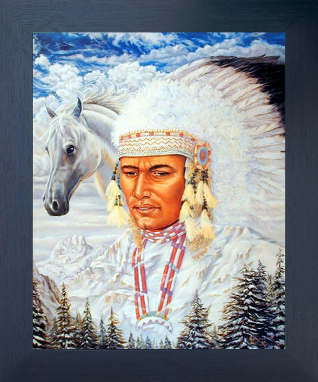 Indian Chief and Horse Native American Wall Espresso Framed Art Print Picture (20x24)