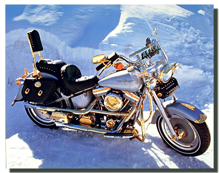 Harley Davidson Motorcycle Posters