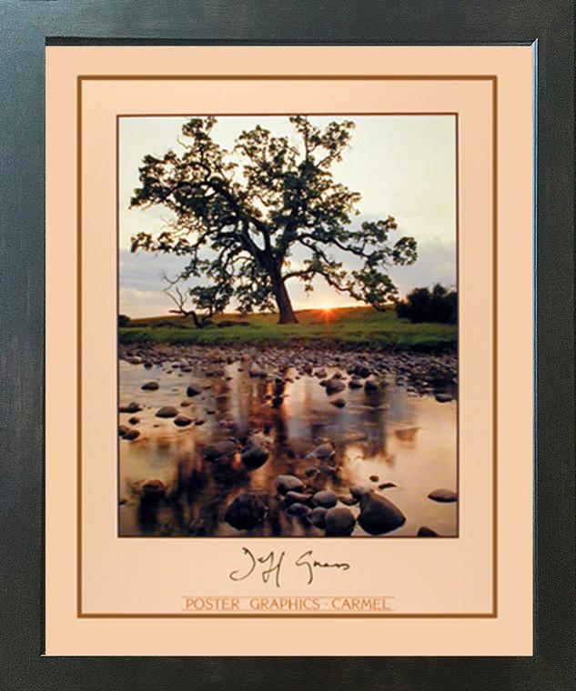 Oak Pine Tree Jeff Gnass Stream Landscape Scenery Wall Decor Espresso Framed Picture Art Print (20x24)