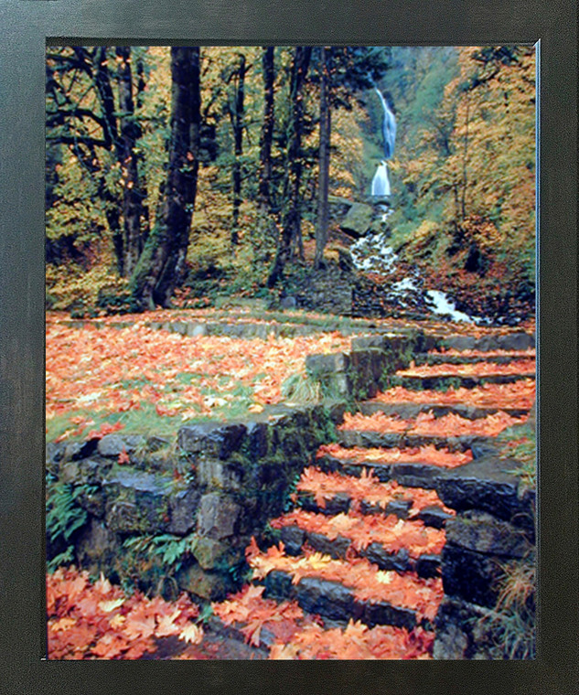 Waterfall And Fallen Autumn Leaves On Steps Nature Scenery Wall Decor Espresso Framed Picture Art Print (20x24)