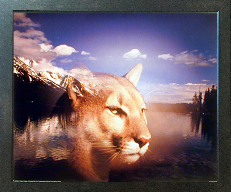 Grand Teton & Spirit of Mountain Lion Landscape Animal Wall Decor Espresso Framed Picture Art Print (20x24)