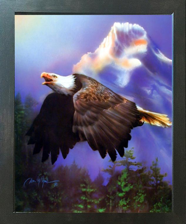 Bald Eagle Flying Dan McManis Wild Animal Wall Decor Espresso Framed Picture Art Print (20x24)