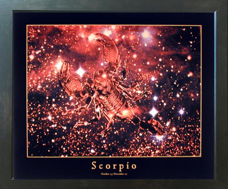 Astrology Scorpio Oct 24 to Nov 22 Zodiac Espresso Framed Picture Art Print (20x24)