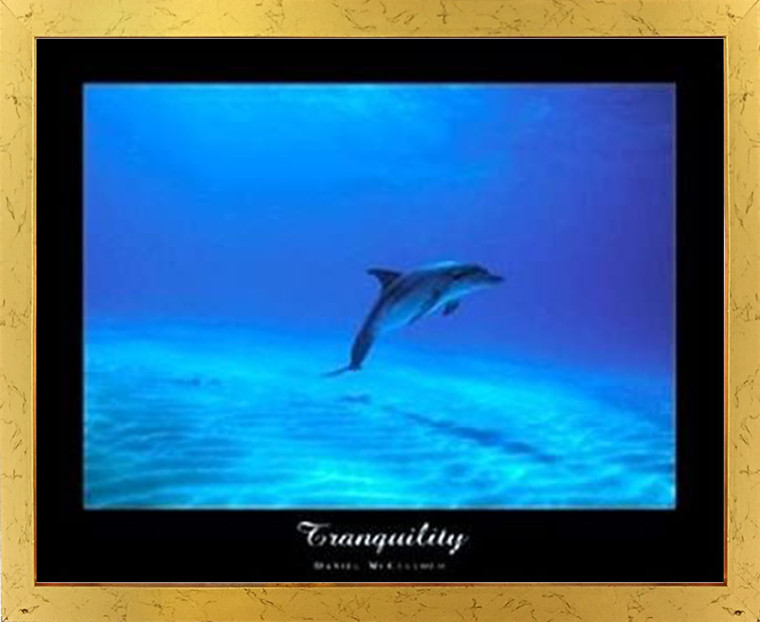 Tranquility Dolphin Underwater Ocean Animal Golden Framed Wall Decor Picture Art Print Poster (18x24)