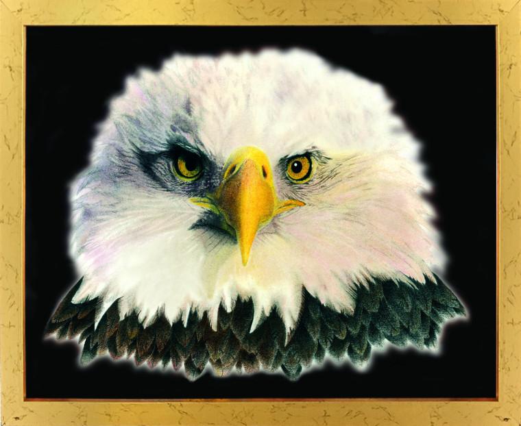 American Bald Eagle National Bird Motivational Golden Framed Wall Decor Art Print Poster (18x24)