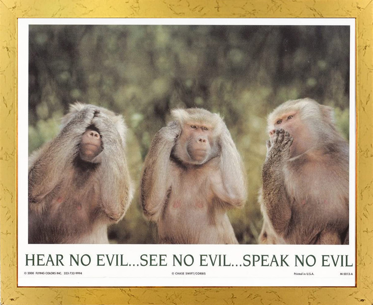 Monkeys Hear No Evil See No Evil Speak No Evil Golden Framed Wall Decor Art Print Poster (18x24)