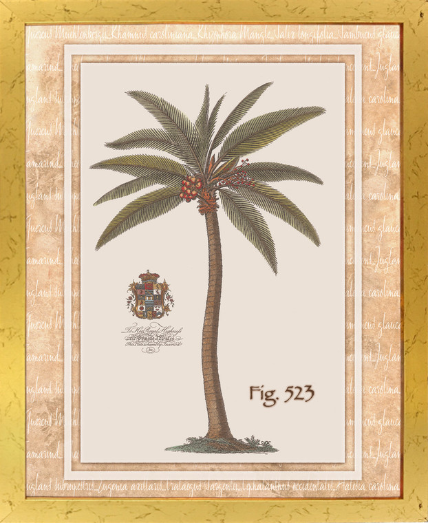 Vintage Palm Tree Fig 523 Tropical Golden Framed Wall Decor Art Print Poster (18x24)