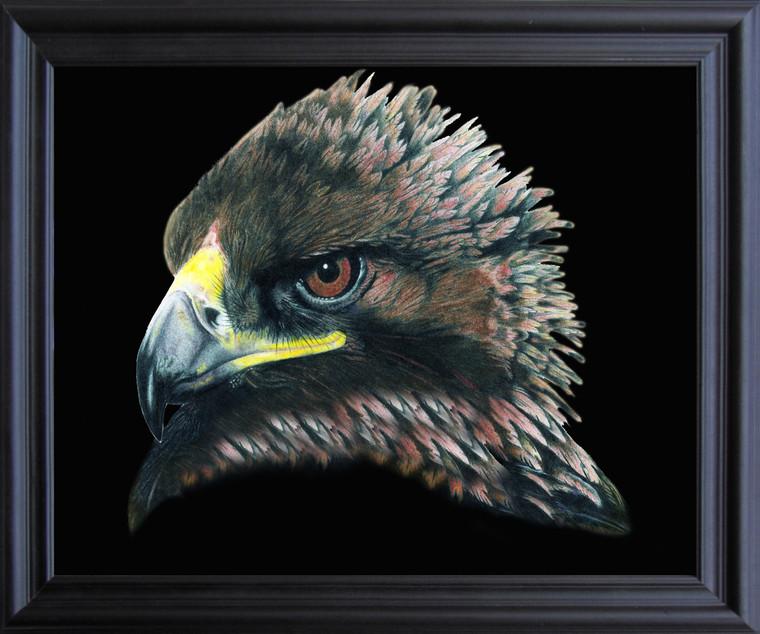 American Bald Eagle Bird Picture Wall Decor  Black Framed Art Print Poster (19x23)