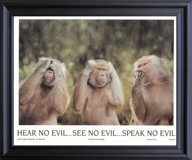 Monkeys Hear No Evil See No Evil Speak No Evil Black Framed Art Print Poster (19x23)