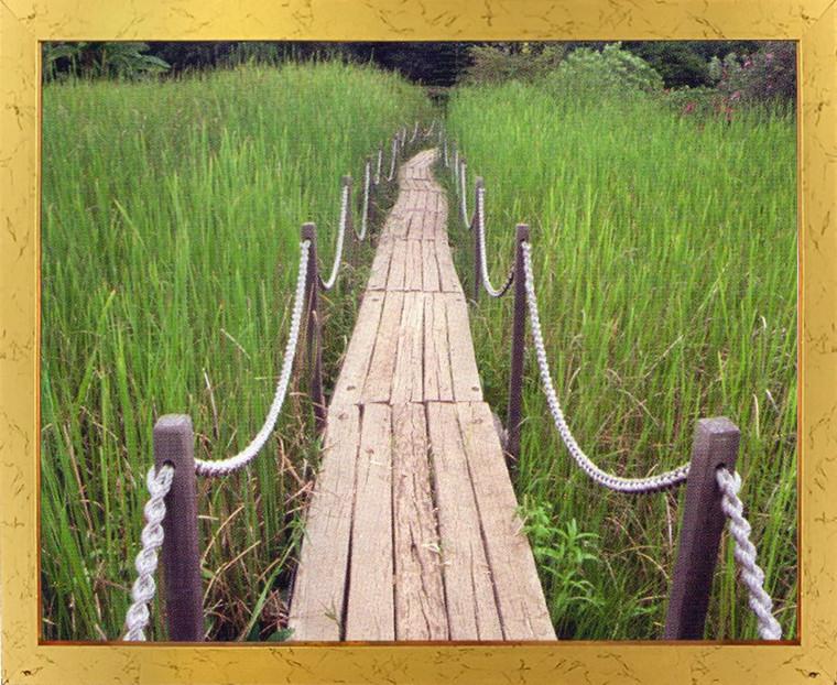 Green Field Wooden Path Landscape Wall Decor Golden Framed Art Print Poster (18x24)