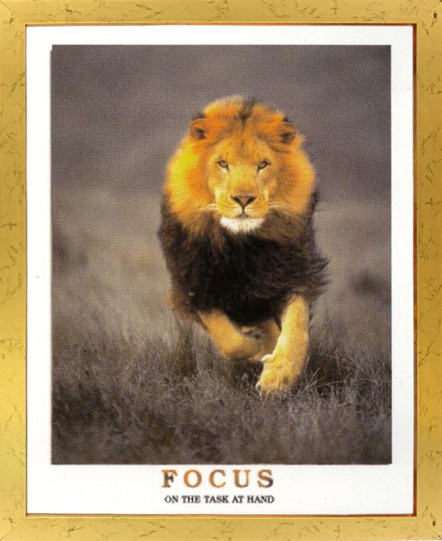 Running Lion Focus On The Task At Hand Wildlife Inspirational Animal  Golden Framed Art Print Poster  (18x24)