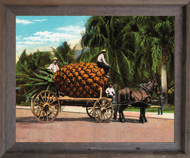 Pineapple Fruit Cart and Trees Wall Decor Barnwood Framed Art Print Poster (19x23)
