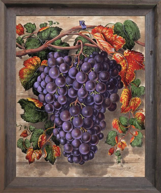 Black Grape Still Life Fruit Kitchen Wall Décor Barnwood Framed Art Print Poster (19x23)