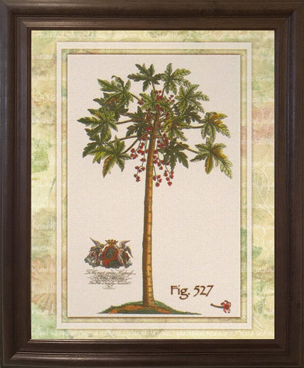 Vintage Tropical Palm Tree Fig 527 Contemporary Wall Decor Brown Rust Framed Art Print Poster (19x23)