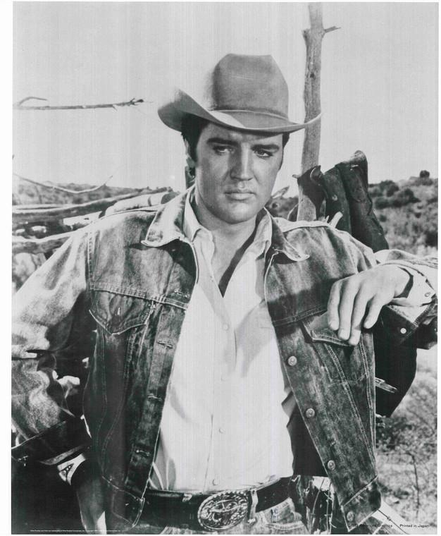 Elvis Presley Posing Poster