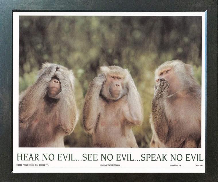Monkeys Hear No Evil See No Evil Speak No Evil Espresso Framed Art Print Poster (18x24)