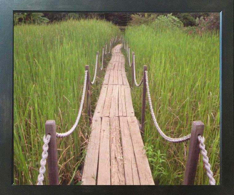 Green Field Wooden Path Landscape Wall Decor Espresso Framed Art Print Poster (18x24)