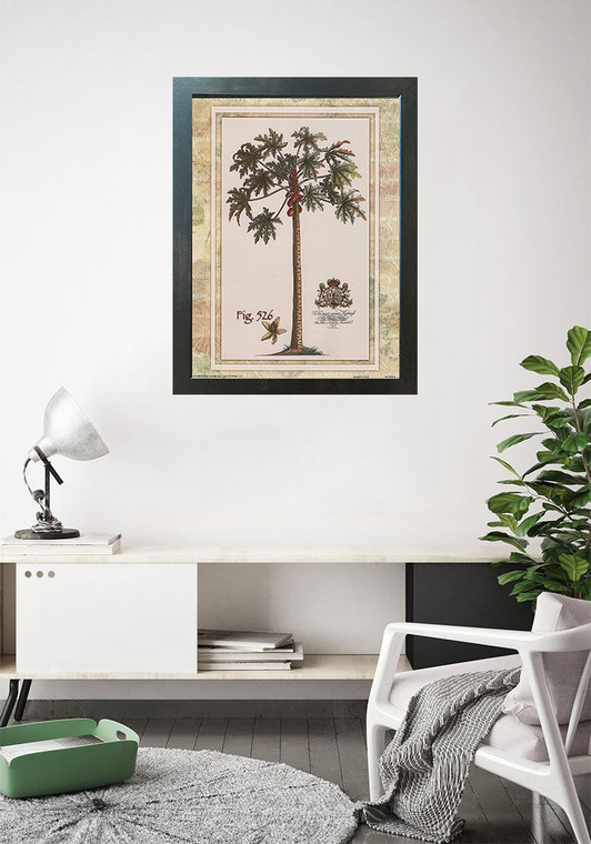 Tropical Palm Tree Vintage Fig 526 Contemporary Wall Decor Espresso Framed Art Print Poster (18x24)