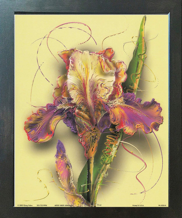 Tulip Flower Floral Fine Wall Decor Espresso Framed Art Print Poster (18x24)
