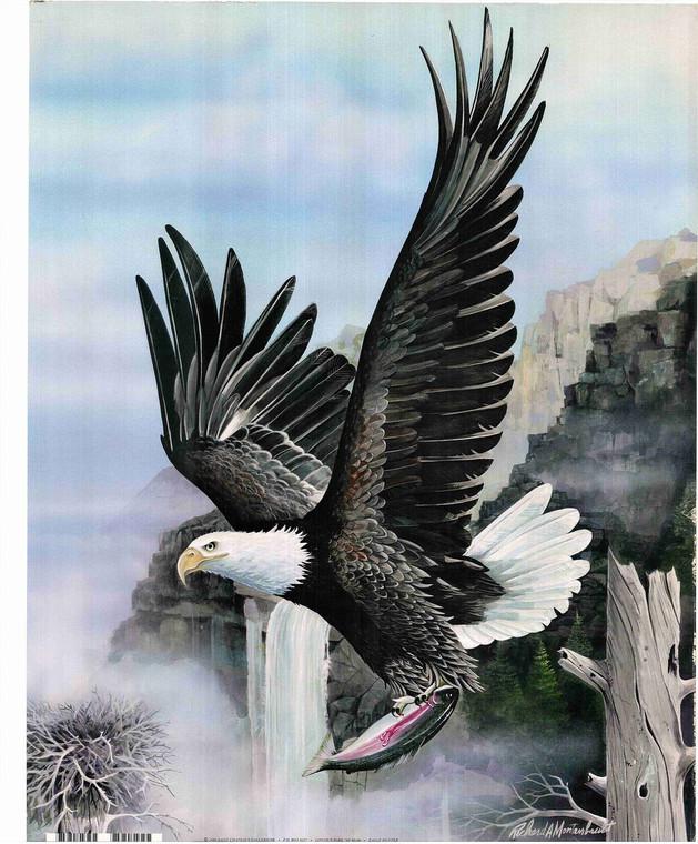 Bald Eagle Hunting Poster