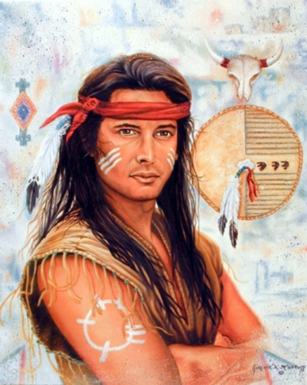 Indian Brave Native American Wall Decor Art Print Poster (16x20)