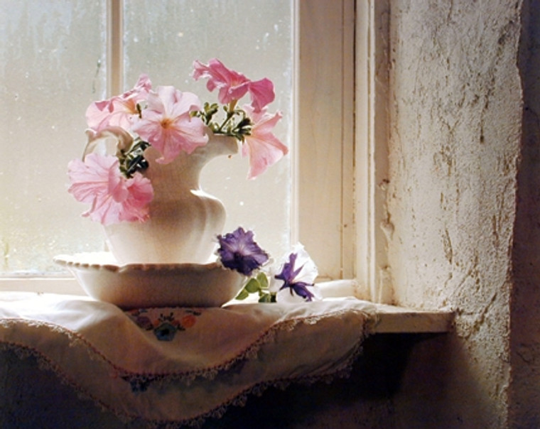 Pink Flowers in Vase Petunias Floral Wall Decor Art Print Poster (16x20)