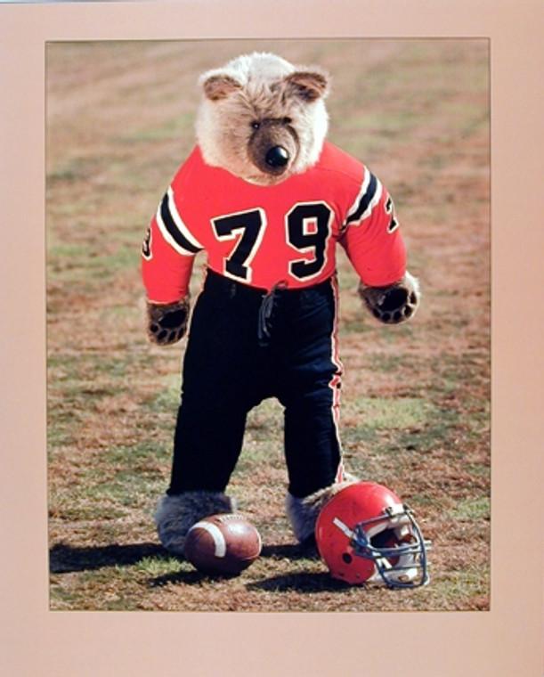 Teddy Bear Football Player Ron Kimball Art Print Poster 16x20