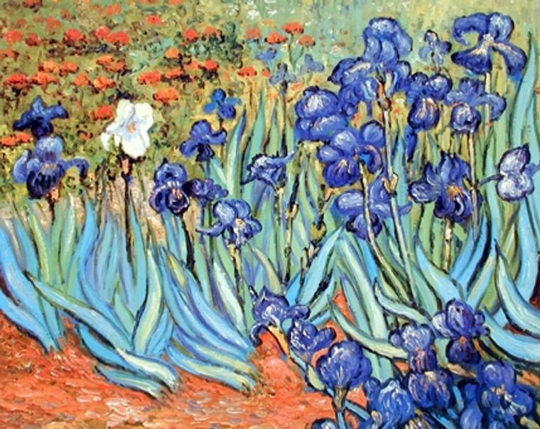 Vincent Van Gogh Irises Flower Floral Garden Fine Art Print Poster (16x20)