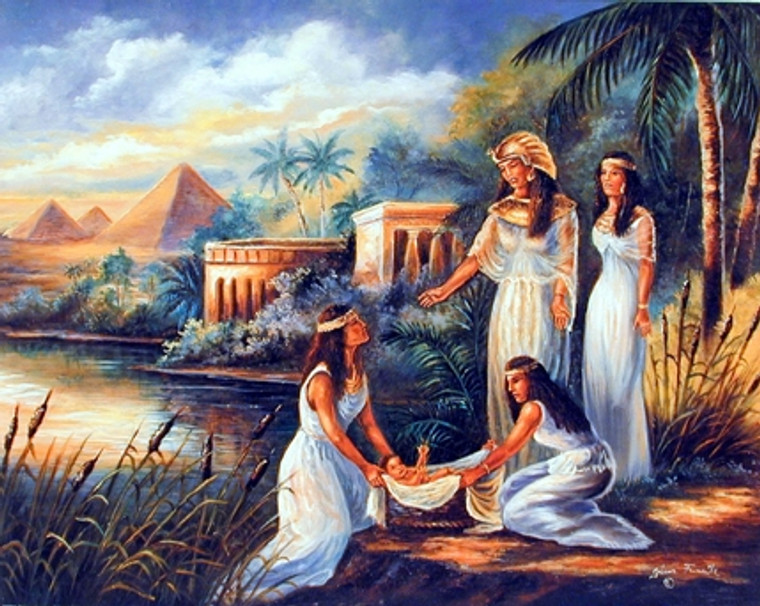 Moses On The Nile Spiritual and Religious Bible Wall Decor Art Print Poster (16x20)