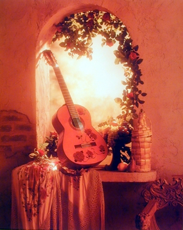 Guitar Surrounded By Flowers Music Wall Decor Art Print Poster (16x20)
