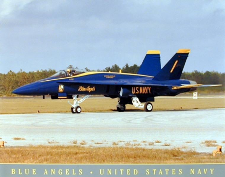US Navy Blue Angels Jet Aviation Aircraft Wall Decor Art Print Poster (16x20)