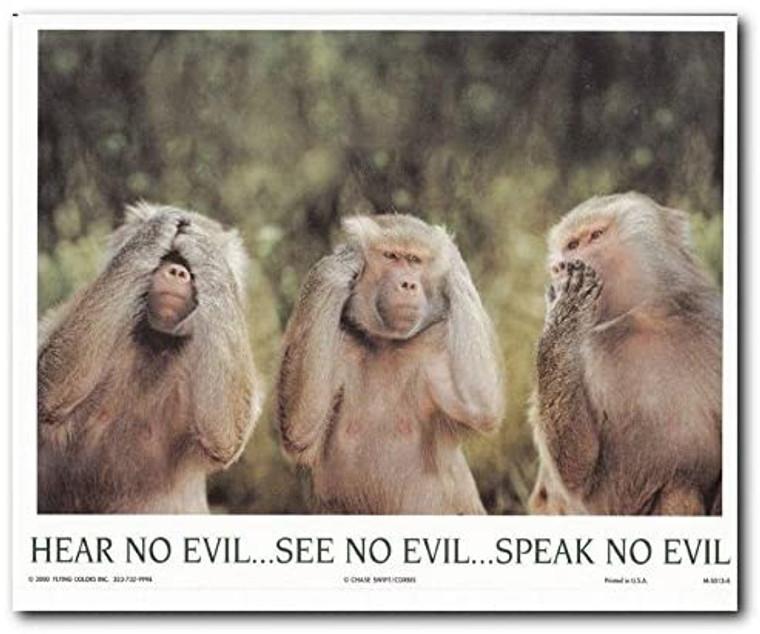 Monkeys Hear No Evil See No Evil Speak No Evil Wall Decor Art Print Poster (8x10)