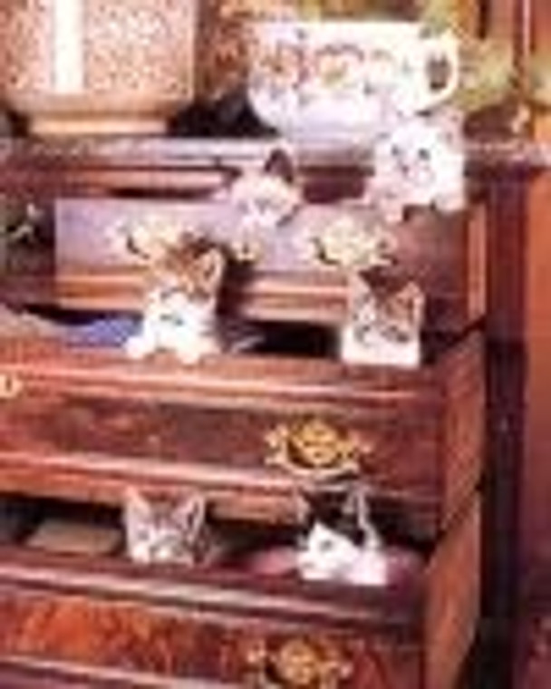 Cute Cats in Drawers Funny Kittens Pet Animal Picture Wall Decor Art Print (8x10)