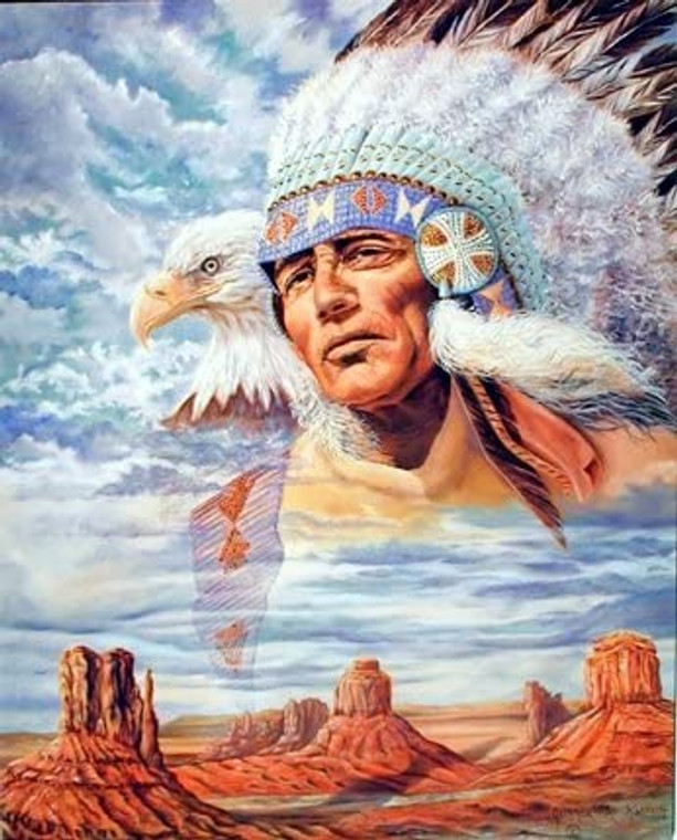 Native American Indian Chief & Eagle Wall Decor Picture Art Print (8x10)