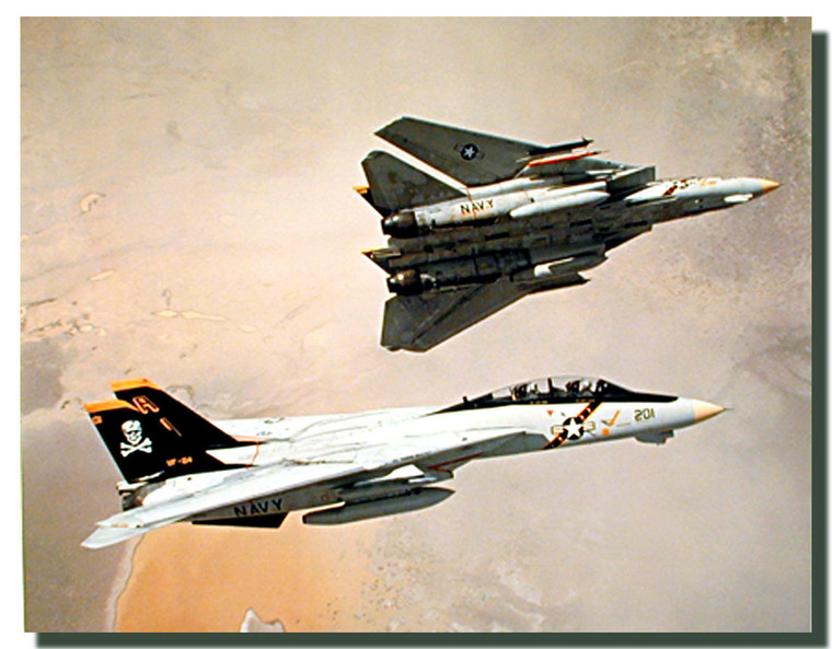F 14 Tomcats Picture