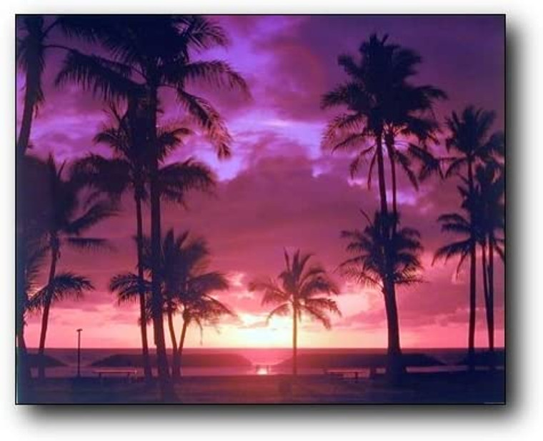 Purple Tropical Sunset Landscape Scenery Wall Decor Picture Art Print (8x10)