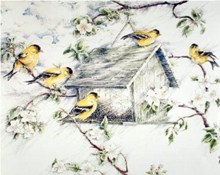 Gold Finches Feeder in Snow Wild Birds Wall Picture Art Print (16x20)