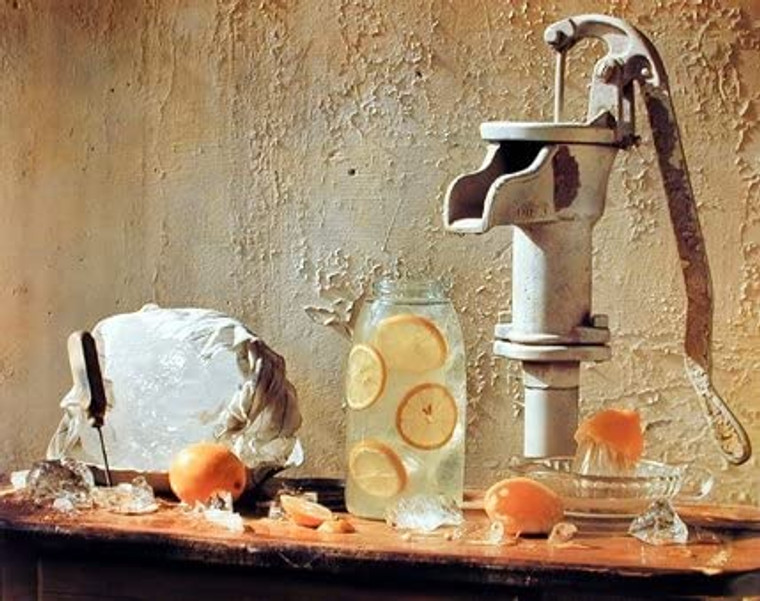 Lemonade Wall Decor Pump with Pitcher Kitchen Art Print Poster (16x20)