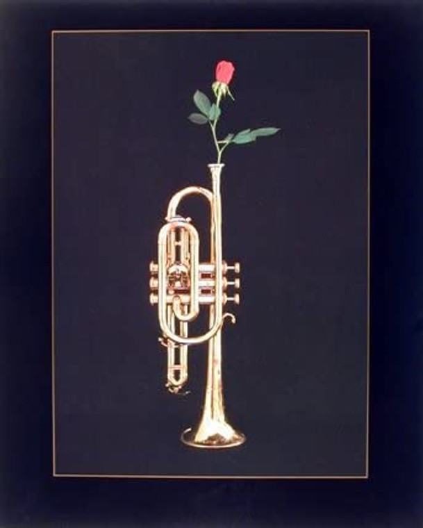 Trumpet with Rose Musical Instrument Wall Decor Picture Art Print (16x20)