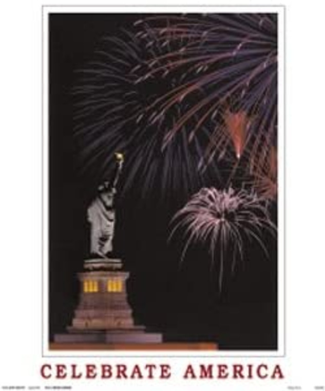 Statue of Liberty Wall Decor America Celebrate Picture Art Print Poster (16x20)