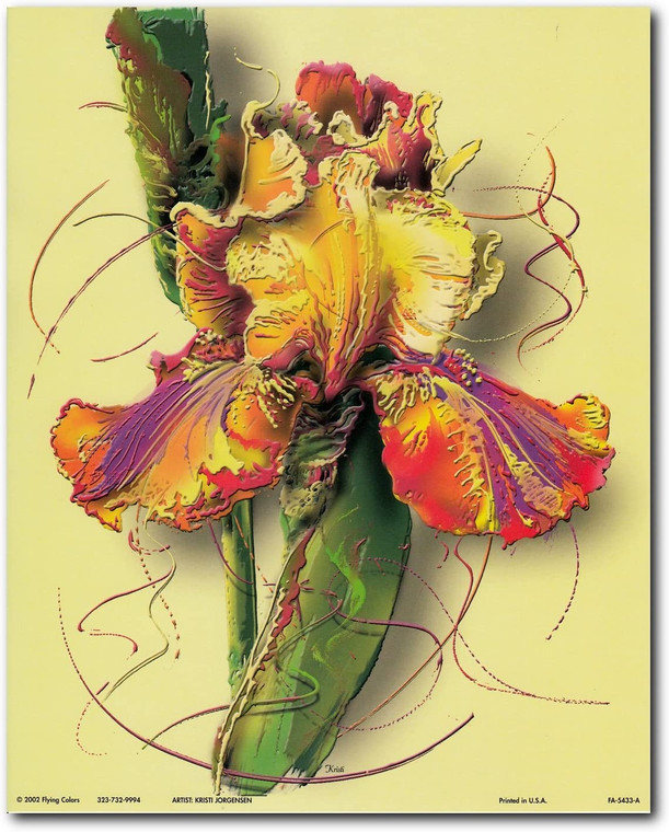 Colorful Flower Floral Fine Wall Decor Art Print Poster (16x20)