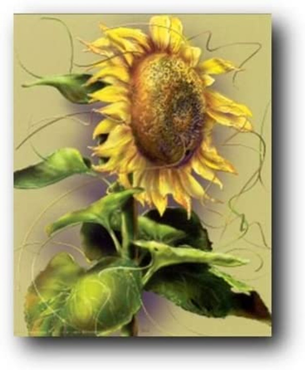Sunflower Floral Wall Decor Picture Flower Art Print Poster (16x20)